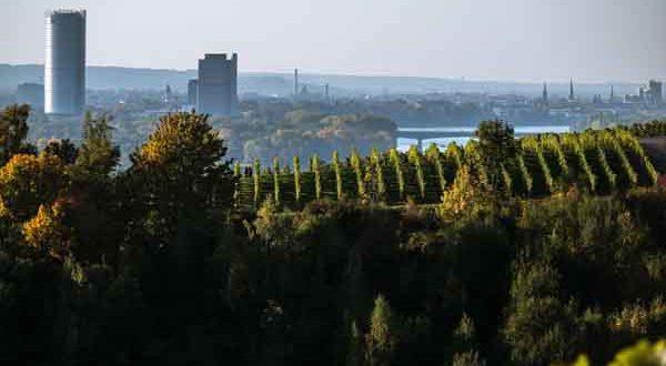 Mit der Fertigstellung des Neubaus Forschungs- und Technologiezentrum Detektorphysik, FTD, wird Bonn um ein Highlight reicher sein. - copyright: pixabay.com