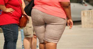 Die Gründe für Übergewicht sitzen tief. Laut neusten medizinischen Erkenntnissen ist der Hang zum Übergewicht nicht nur genetisch verankert, sondern sogar in der Frühschwangerschaft programmiert worden. copyright: pixabay.com