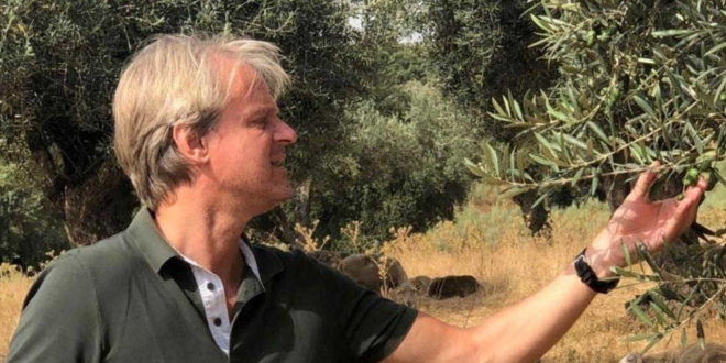Vom Sportpromoter zum Bio-Landwirt: Hartmut Zastrow handelt jetzt mit Olivenöl